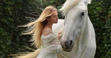 اجعل الخيل يحبك- كيف تجعل الحصان يتق بك؟